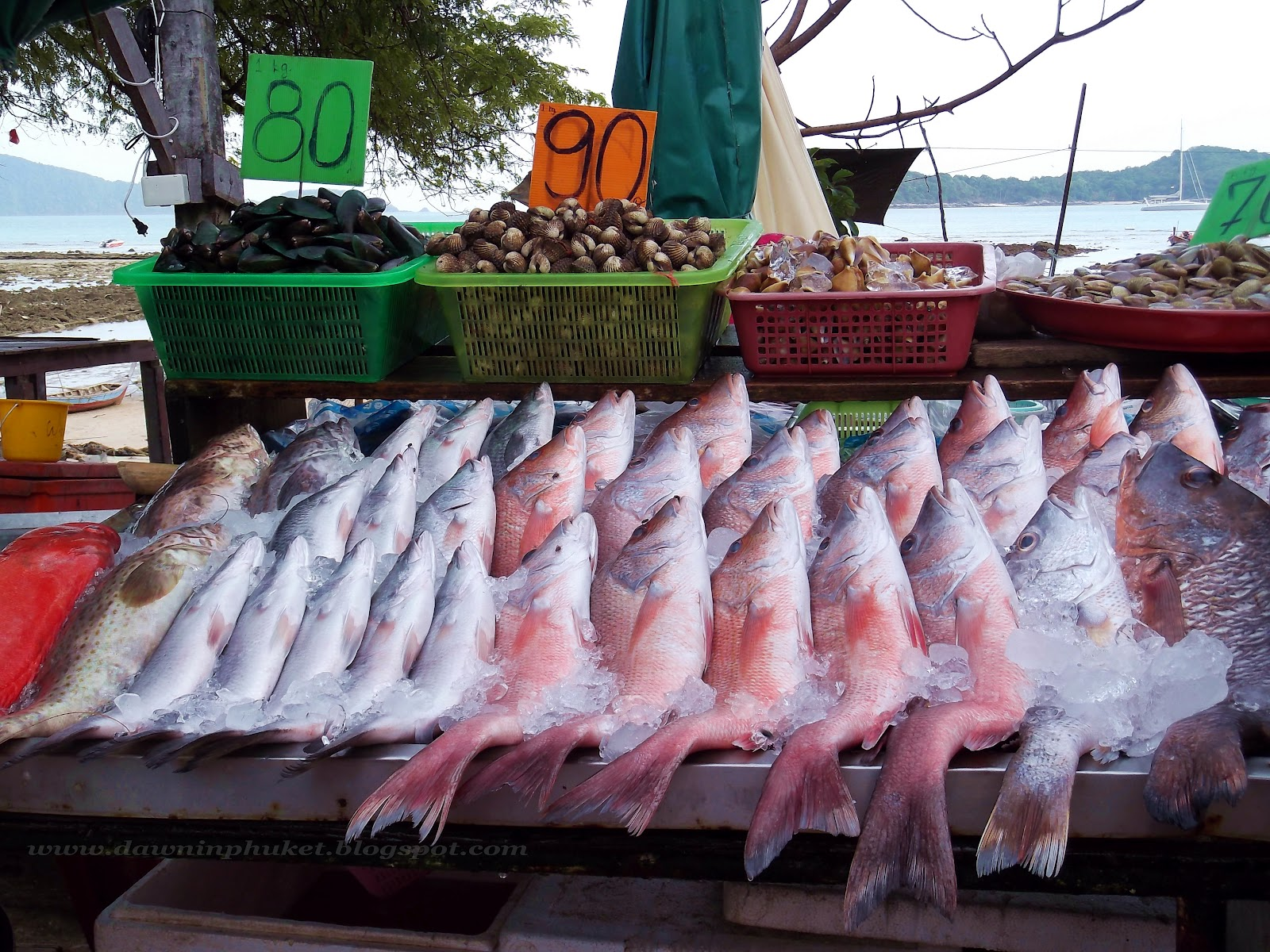 Dawn in phuket beach side dining in rawai for Closest fish market