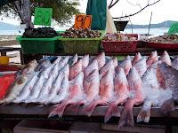 Fish Market, Rawai Beach, Phuket, Thailand