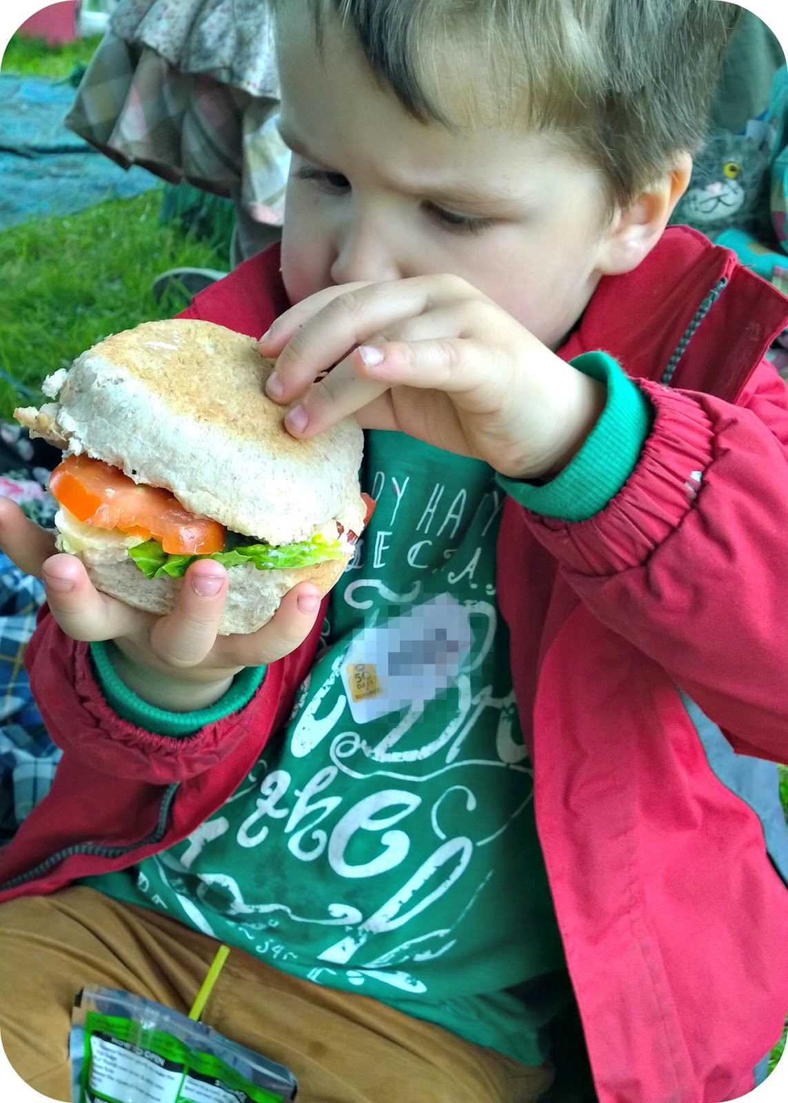 Roberts Bakery 50 Days of Summer Picnic in Delamere Forest SLT