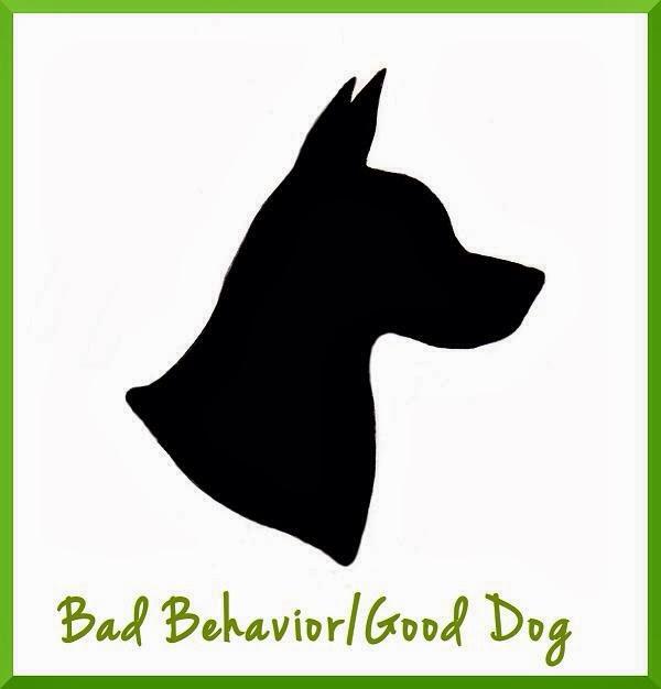Bad Behavior/Good Dog