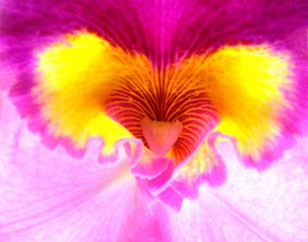 В Сърцето Сме Реално Свързани със БОГ