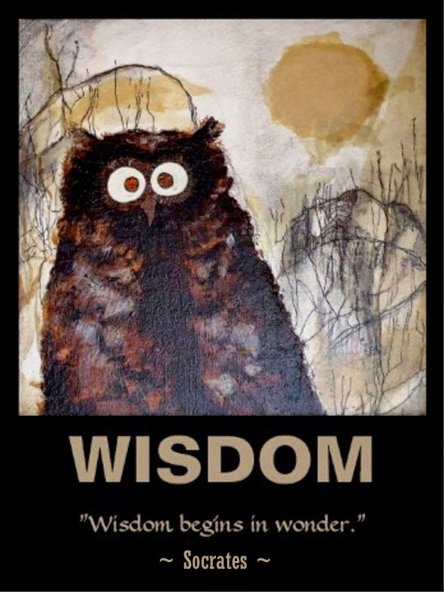 owl wisdom art poster socrates quote