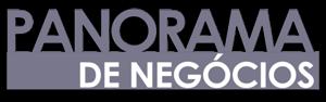 PANORAMA DE NEGÓCIOS