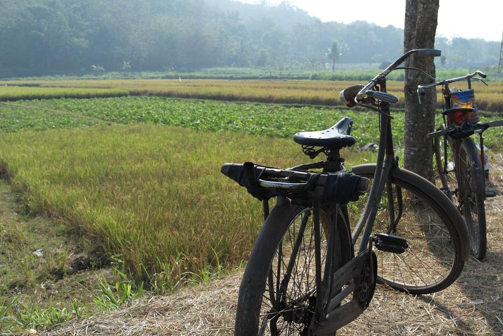 foto sepeda onthel terbaru