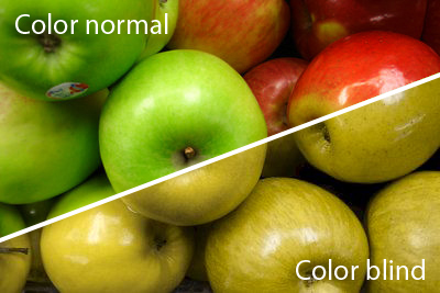 colour blindness what do you see