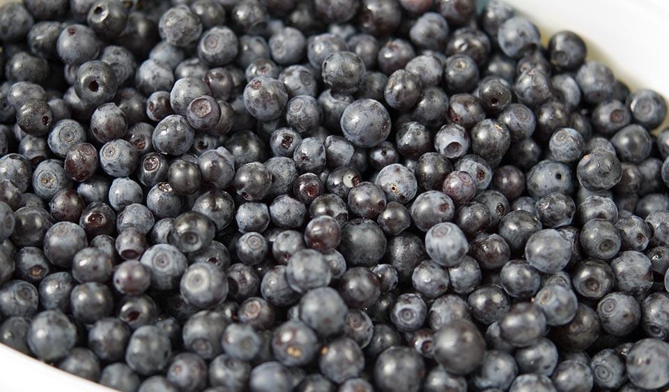 blåbær jord