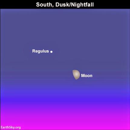 1 - Mặt Trăng gần sao Regulus, trái tim của Sư Tử.