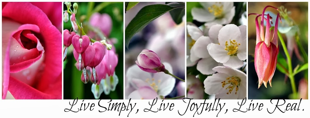 Lynne Wilson: Live Simply, Live Joyfully, Live Real.