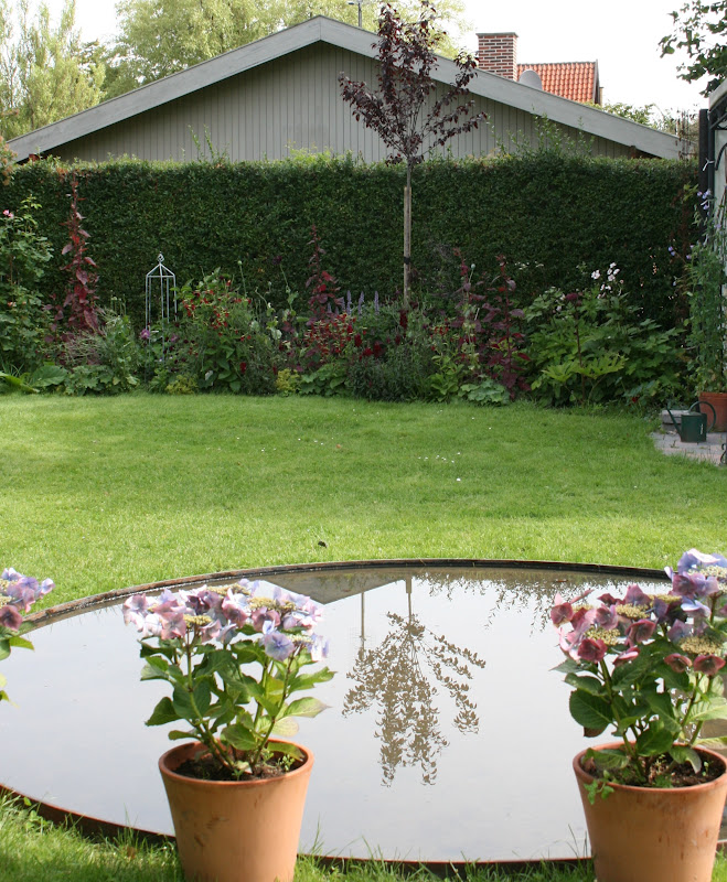Countryliv: mørke planter i august