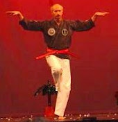 Karate Demonstrations