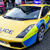 World's Top Police Cars