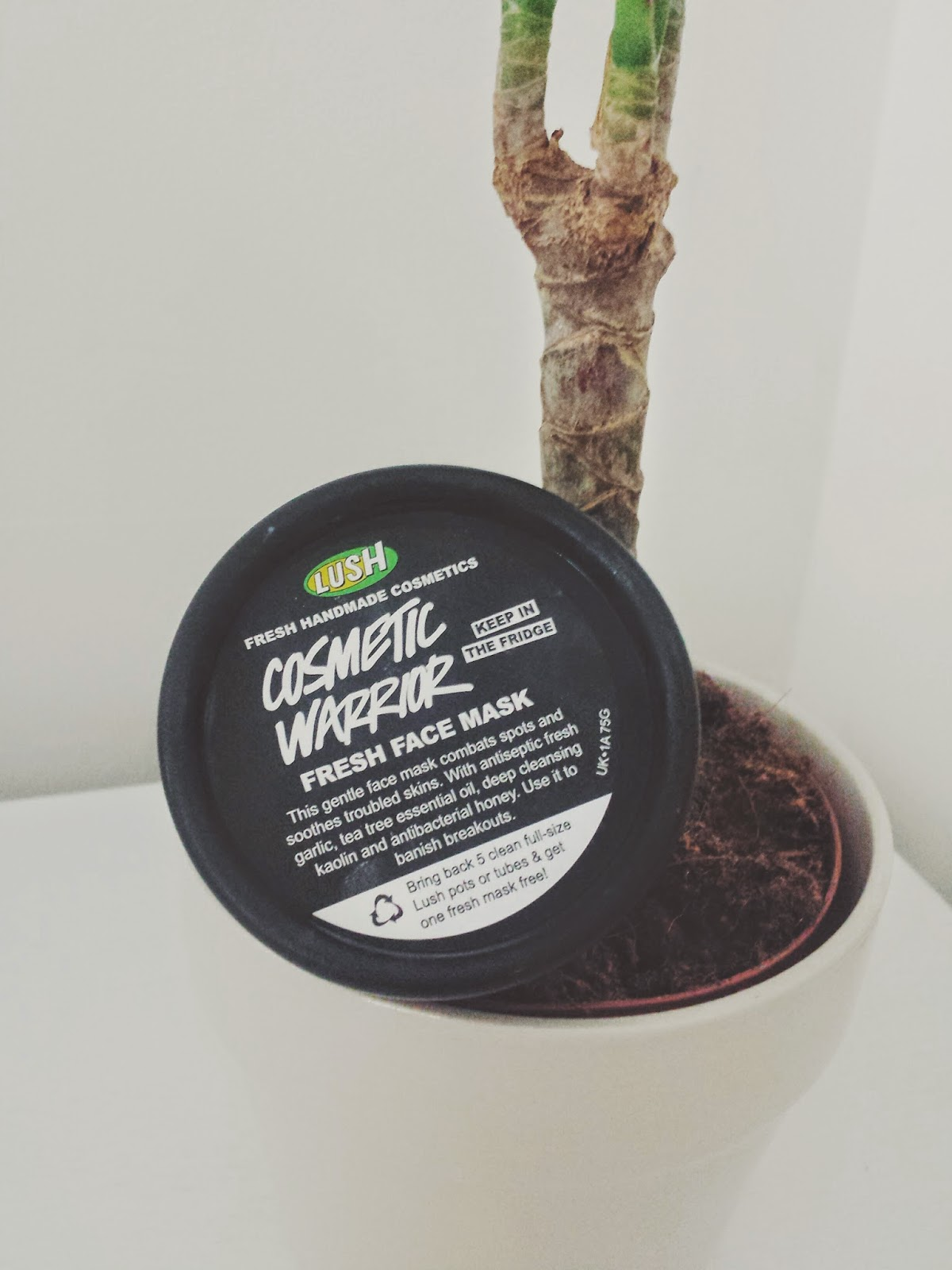 Cosmetic Warrior Face Mask - LUSH