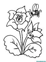 Mewarnai Gambar Lebah Dan Bunga