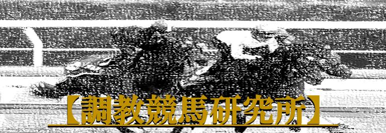 【調教競馬研究所】