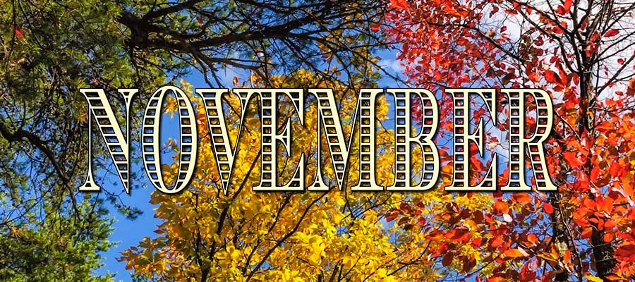 Image result for november header