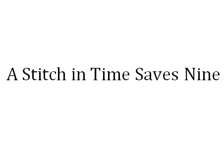 Stitch In Time Saves Nine Essay