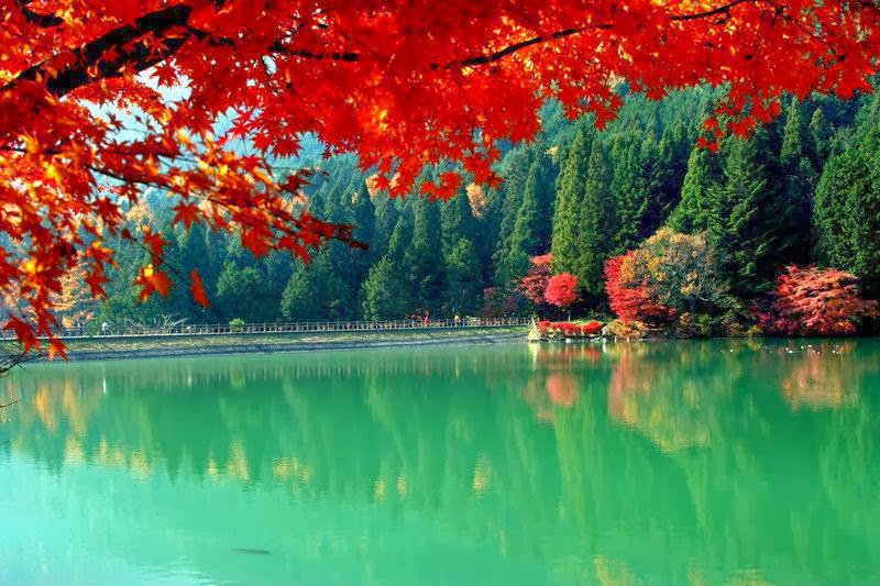 15 Amazing Nature Wallpapers HD Part 7