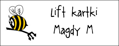 http://diabelskimlyn.blogspot.nl/2014/02/lift-kartki-magdy-m.html