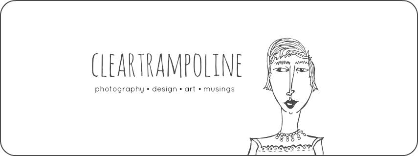 Clear Trampoline