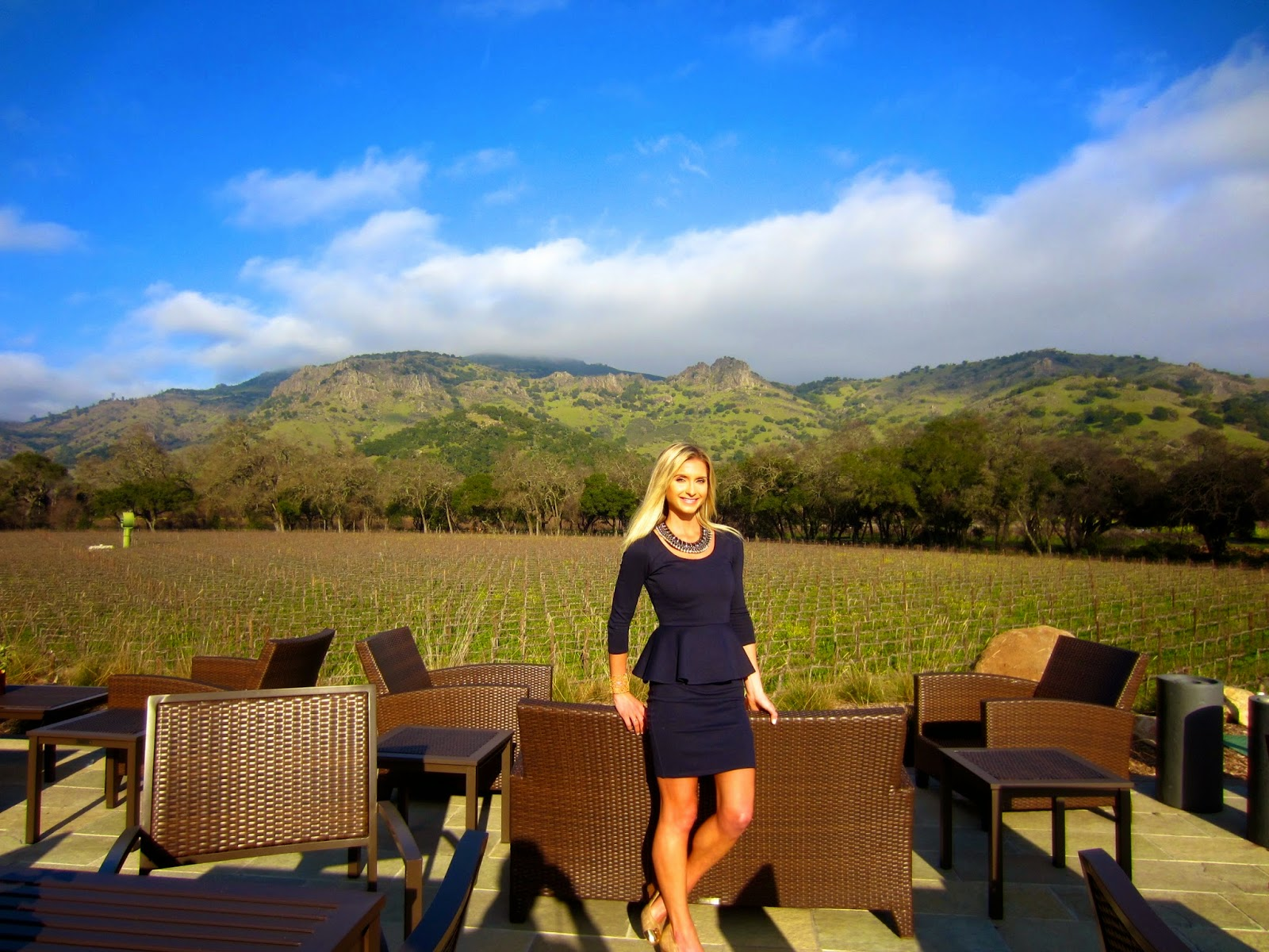 Whatu0027s New Despite change in ownership and winemakers one of Napau0027s most famous and celebrated wineries Stagu0027s Leap keeps getting better with age. & Decantress Wine Diary: No Bottleshock u2013 Stagu0027s Leap Cellars Opens ...