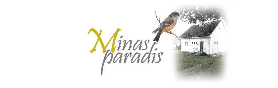 Minas Paradis