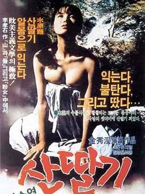 film-porno-korea