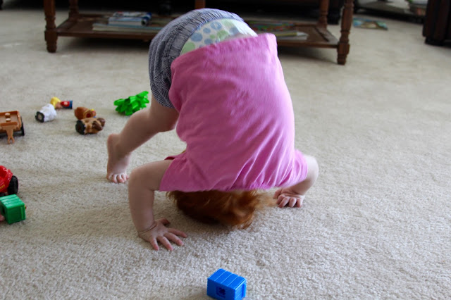 Rose Turning a Somersault