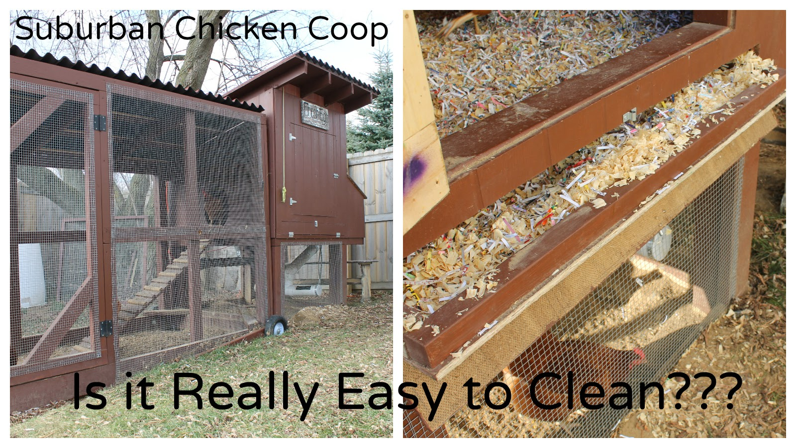Is the easy to clean suburban chicken coop really easy for Quick chicken coop