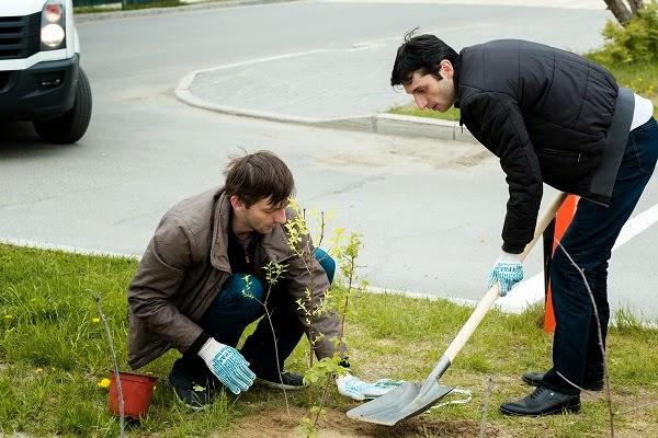 Échecs : Grischuk et Jobava plantent un arbre pendant la journée de repos - Photo © Kirill Merkurev