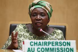 Afrique / UA : Un sommet dans un contexte de troubles sécuritaires et d'incertitudes politiques