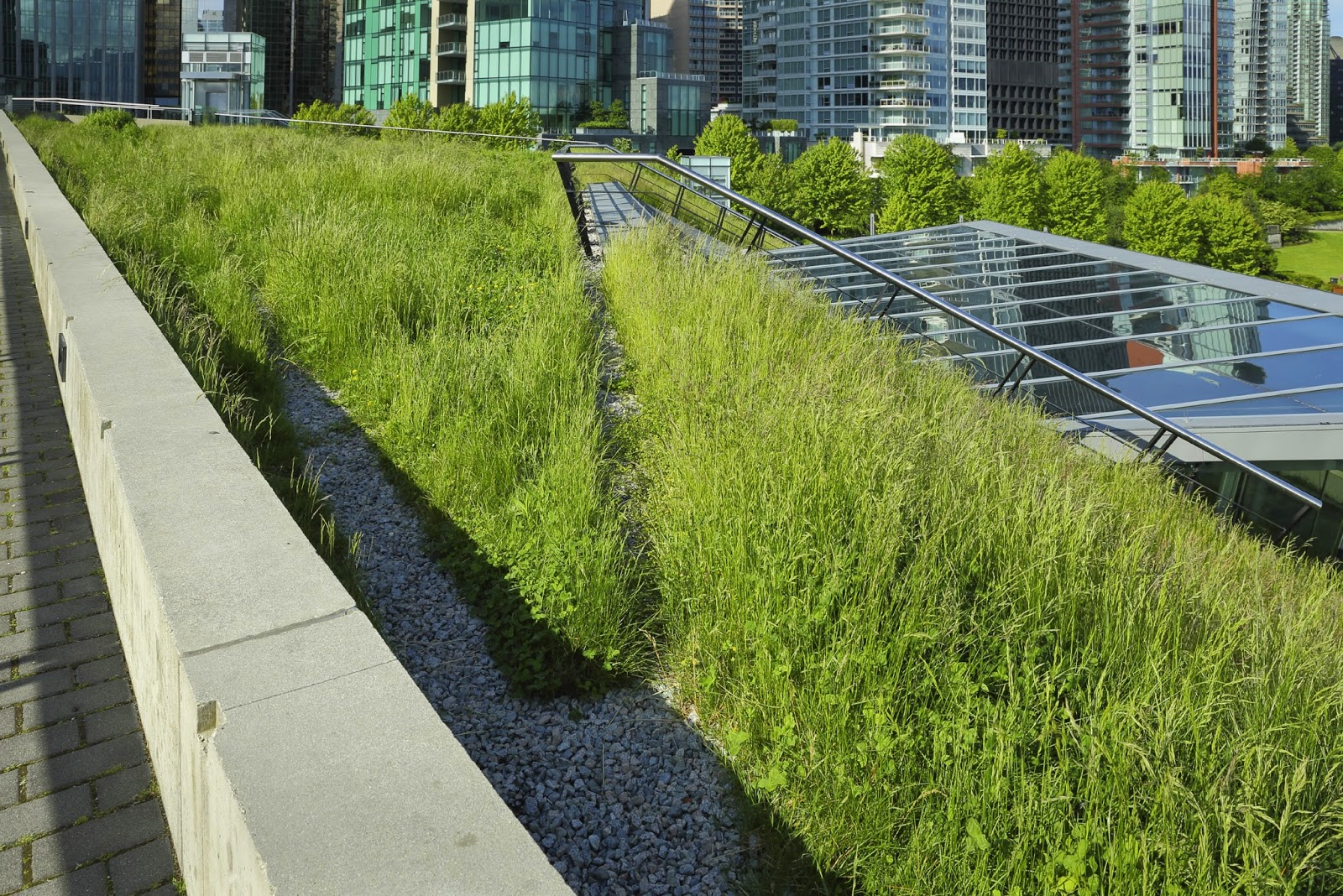 Phil's Main Roofing, Green Roofs