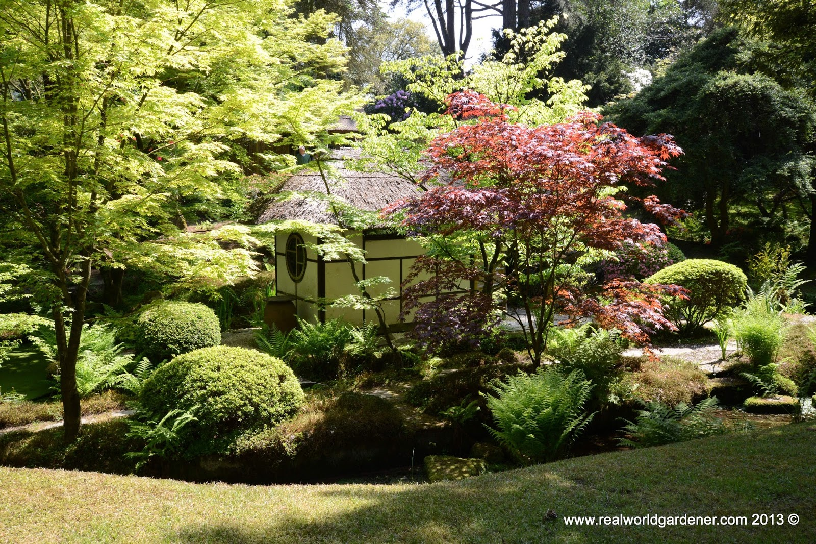 Real world gardener inspirational japanese gardens in for The landscape gardener