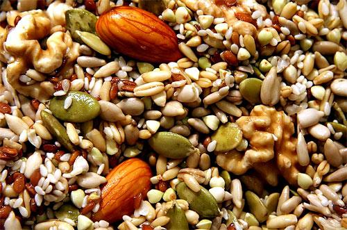 Sabidur a vegetal minerales el magnesio - Semillas de frutas y verduras ...