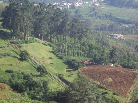 Ketti Valley View Ooty