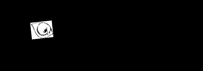l'ombelico     di     Venere