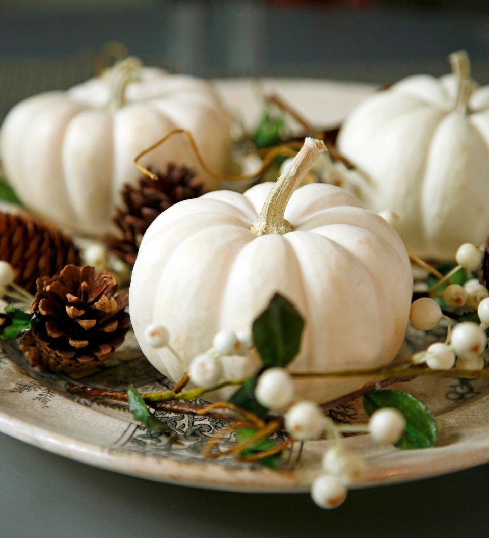 Gone coastal a non town white pumpkins