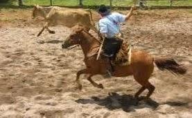 Cantagalo:Rodeio crioulo dias 17,18 e 19 de abril , organização Piquete Vovô Inocêncio