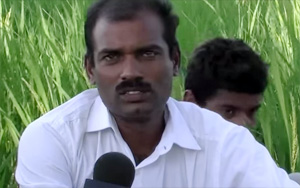 New Paddy Capsule Cultivation – Innovative Idea From a Rural Farmer