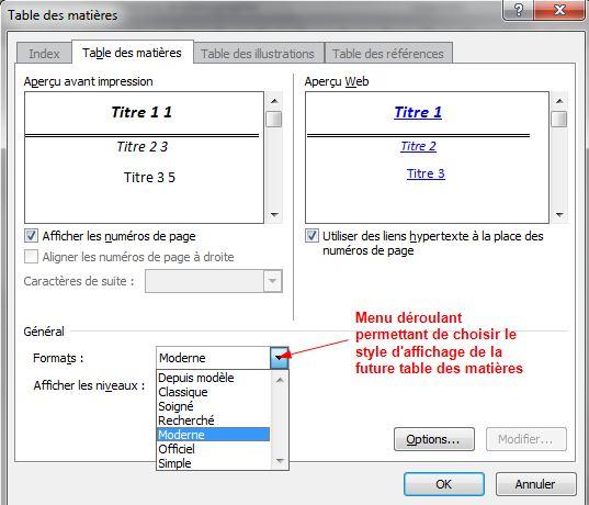 style d'affichage de la table des matière d'un document au format Word