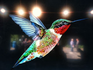 Google Hummingbird Algorithm - Technocratvilla.com