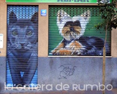 El gato y el yorkshire