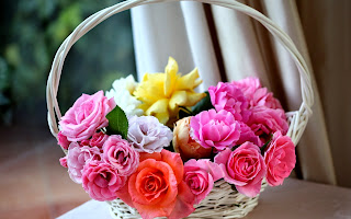 Pink Rose Flowers Desktop Pic