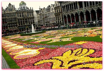 Imagem do chafariz e do tapete de flores da Grand Place de Bruxelas, Bélgica.