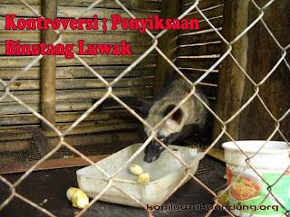 gambar penyiksaan binatang luwak dalam kandang