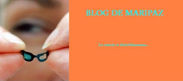 el blog de maripaztercerciclo