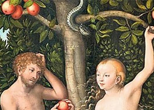 Inilah Buah Terlarang yang diduga dimakan Adam Hawa
