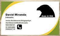 O meu cartão de contacto