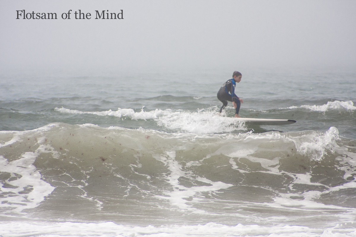 Riding the Waves - Flotsam of the Mind