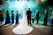 Seattle Aquarium Night Weddings Waterfront