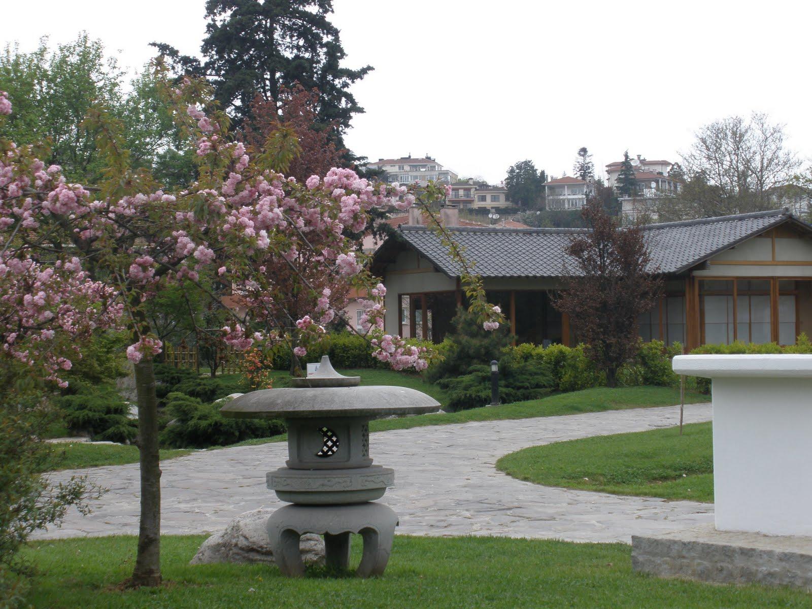 amy in istanbul baltalimani japanese garden